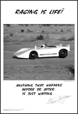 Racing Is Life- #17
