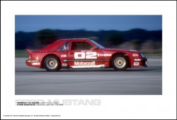 FORD MUSTANG JOHN BAUER/MILT MINTER - SEBRING 12 HOURS MARCH 20, 1982